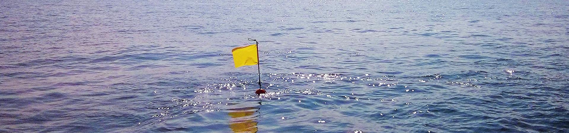 Buoy Ocean